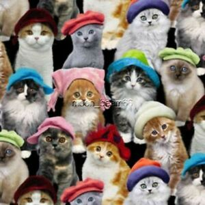 7/8 Yard Adorable Pets Cats with color Hats on Black Cotton Fabric