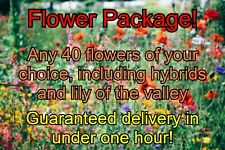 Animal Crossing New Horizons 40 Flowers of your choice! Including hybrids!