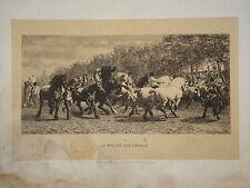 J.VEYRASSAT (1828-1893) LITHO MARCHE CHEVAUX HIPPIQUE CHEVAL ROSA BONHEUR 1853