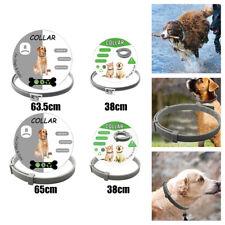 Pet Supplies Insect Repellent Adjustable Anti Flea Tick Neck Collar for Dog Cats