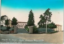 64401  - CARTOLINA d'Epoca - PAVIA provincia :  CHIGNOLO PO 1961