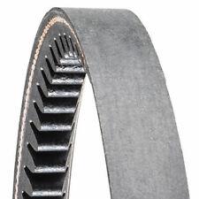 Cinghia Trapezoidale Dentata sezione A 13 x Misure (Gates - AE - Dayco)