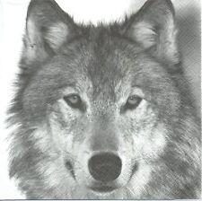2 Serviettes en papier Animaux Loup Decoupage Paper Napkins Wolf