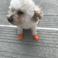 Pet Socks Cat Socks Puppy Socks For Home Pet Supplies Practical Soft Comfortable