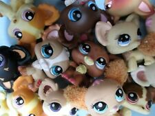 Littlest Pet Shop Set Lot of 3 RANDOM Chihuahua Puppy Dogs Authentic + Gift Bag!
