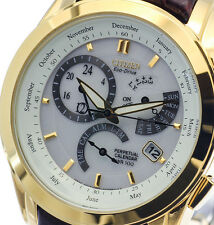 NEW MEN'S CITIZEN SOLAR ECO DRIVE PERPETUAL CALENDAR ALARM WATCH BL8002-08A