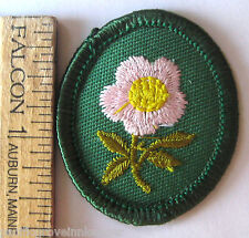 Retired Oval 1978-2011 Girl Scout WILD ROSE TROOP CREST Flower Patch Badge ID