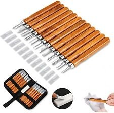 Wood Carving Tools 12 Set SK2 Carbon Steel Sculpting Knife Kit for Professions