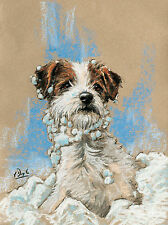 Jack Russell Terrier Dog, Christmas cards pack of 10 by Paul Doyle. C474X