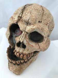 "Halloween Party Prop Resin Skull with Eyeball 7"" x 5"""