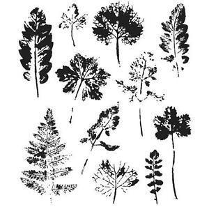 Tim-Holtz-Cling-Rubber-Stamp-Set-7-X8-5-Leaf Prints