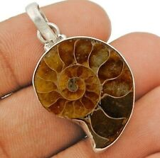 Natural Ammonite Fossil 925 Sterling Silver Pendant Jewelry EC20-3
