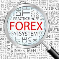 Fully Stocked FOREX Website|FREE Domain|Hosting|Traffic|Make Money In 24 Hours!