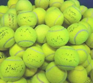 15 or 30 Used Tennis Balls. Great For Dogs. Sanitised. Branded. GREAT CONDITION.