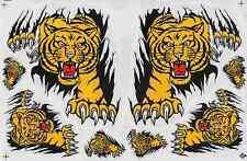 "D557 Tiger Beast Racing Tuning Sticker Decal 1 Sheet 10,5""x7"" / 27x18 cm"