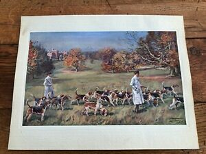 1937 original lionel edwards print - hounds at exercise !  ( hunting )