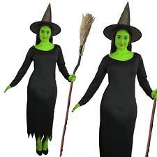 Ladies Wicked Witch Dress Hat Halloween Fancy Dress Wicked Elphaba Grotbags
