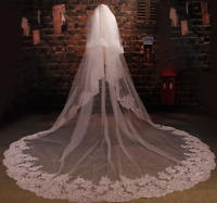 Cathedral Length Wedding Bridal Long Veils + Comb 3 M White Ivory Lace Crystals