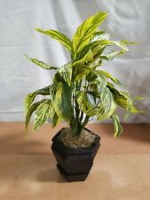 """Artificial 20"""" Ginger Plant with Black Planter"""