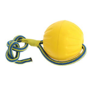 Foam Ball Pet Dog Training Toy Ball with Rope