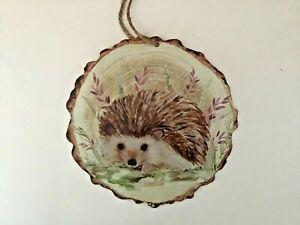 New round Hedgehog wildlife nature wooden hanging plaque gift cute Free P&P