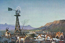 """""""ANTELOPE IN RANCH COUNTRY"""" (Am. Classic #5) Signed By Les Kouba"""