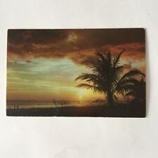 Sunset Captiva Island Florida Unposted Postcard