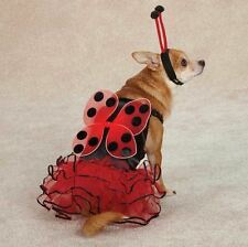 Casual Canine Lucky Lady Bug  Dog Halloween Costume XS-XL  Ladybug Pet