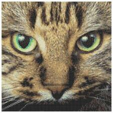 Tabby Cat 3 - 14 Count Cross Stitch Kit