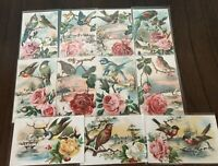 Beautiful Lot of 11~Birds~Roses~Scenes~Antique Greetings Postcards-Unused~b413