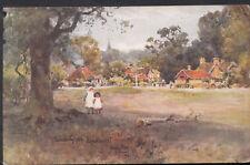 Hampshire Postcard - Swan Green, Lyndhurst - Artist Wilfred Ball  RS4761