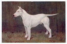 ENGLISH BULL TERRIER NAMED CHAMPION OLD SPRATTS DOG FOOD POSTCARD by F T DAWS