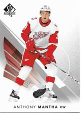 Detroit Red Wings - 2017-18 SP Authentic - Complete Base Set Team (3)