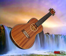 LANIKAI LMC Concert Ukulele All Solid Mahogany RARE Rosewood Fretboard