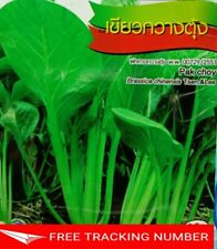 4x 4700 Seeds Pak Choy Chia Tai Quality Seed Home Garden Plant Thai Vegetable