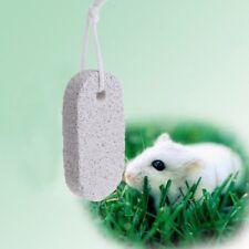 Pet Teeth Grinding Stone Minerals Hamster Rabbit Rat Squirrel Volcanic Chew Toys