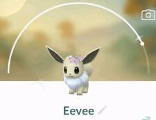 Pokemon go 💥💥shiny Flower Crown Eevee💥💥 choose EVOLUTION