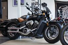 Dart Classic Flyscreen Indian Scout - Dark Tint INS01D-41