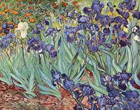 Oil painting Vincent Van Gogh - Irises still life purple flowers hand painted