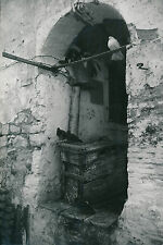 ÎLE DE CORFOU c. 1935 - Maison  Pigeons  Grèce - DIV 9279