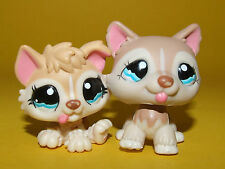 Rare Littlest Pet Shop LPS Hasbro - Mommy Baby Tan Husky Puppy Dog #1012 #1013