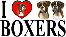 I LOVE BOXERS Dog Car Sticker By Starprint - Ft. the Boxer - Auto combined post
