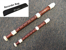 Beautiful Pro Wood Simulated Colors 6 Recorders of  Set