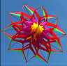 3D LOTUS FLOWER 1.5m KITE SINGLE LINE OUTDOOR TOY FLYING FOR KIDS SPORT