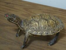 Turtle VintageStuffed Taxidermy - from the 1950's or '60's