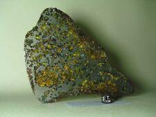 meteorite pallasite SEYMCHAN, excellent COMPLETE slice 267,1 g