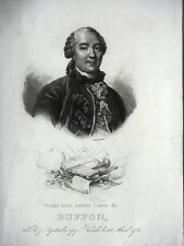 GRAVURE ANCIENNE 19e - GEORGES LOUIS LECLERC COMTE DE BUFFON