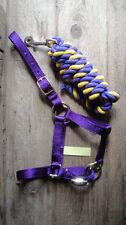 Mini Horse~Donkey Multi-Adjustable PURPLE Halter & lead