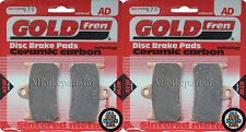 YAMAHA YZF- R1 (2000-2001) > SINTERED CERAMIC CARBON FRONT BRAKE PADS *GOLDFREN*