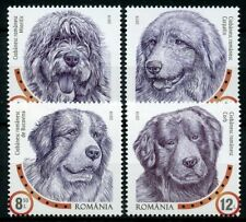 More details for romania 2019 mnh dog breeds romanian shepherd dogs 4v set pets animals stamps